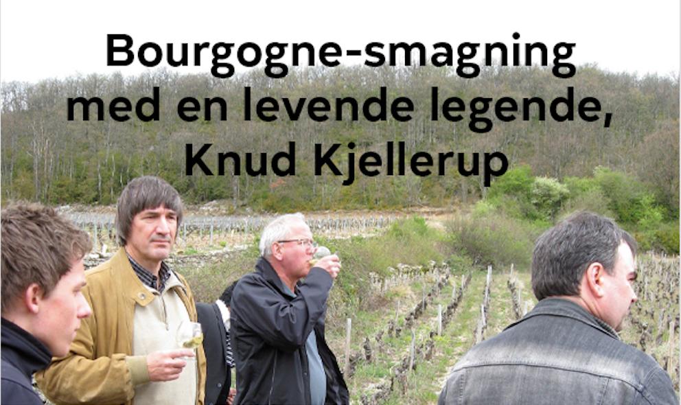 Bourgogne smagning med Knud Kjellerup