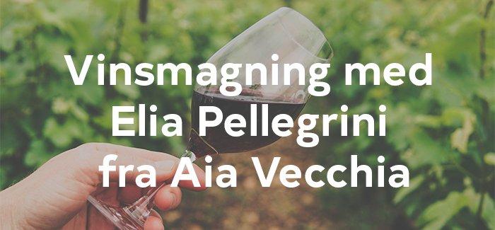 Vinsmagning med Aia Vecchia